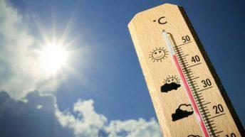 Тропическа жега може да бъде победена – от изолацията и стената