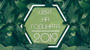 """Цветът на 2019 – """"Органик"""", ще бъде представен на специално турне в страната"""