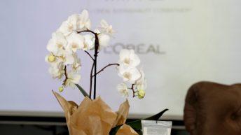 """""""Споделяме красотата с всички"""" – амбициозна програма на L'Oréal за устойчиво развитие и в България"""